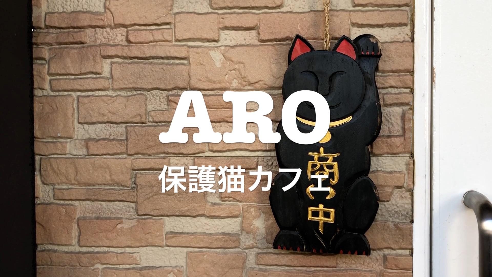 保護猫カフェARO ×りずむチャンネル